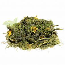 Адоніс весняний (горицвіт), трава 50 гр.