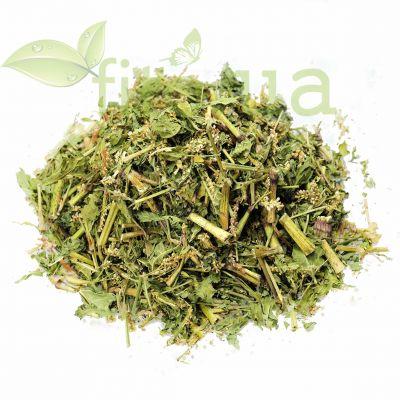 Натуральна трава Гірчака почечуйного в еко упаковці