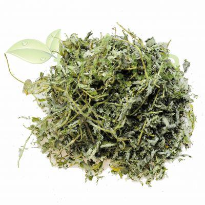 Перстач гусячий трава в еко упаковці