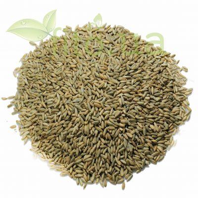Зерна жито в еко упаковці