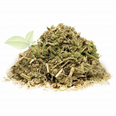 Трава Шандра звичайна в сухому вигляді в еко упаковці