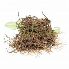 Валеріани корінь, 50 гр.