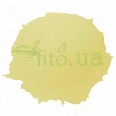 Натуральний пилок лікоподій - плавун в еко упаковці