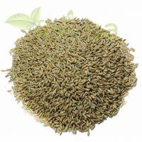 Жито зерно, 250 гр.
