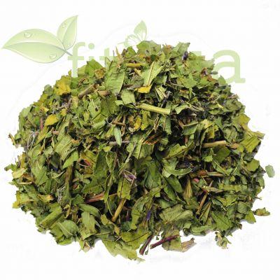Листя іван-чаю містять каротин і аскорбінову кислоту
