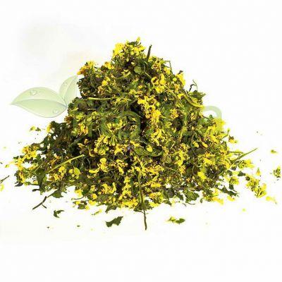 Суха трава Зеленчука жовтого (Яснотки жовтої)