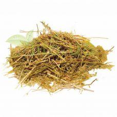 Золототисячник трава 50 гр.
