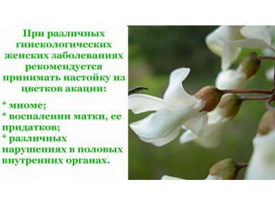 Акація біла при міомі і інших захворюваннях