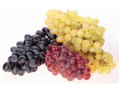 Ампелотерапія - лікування виноградом