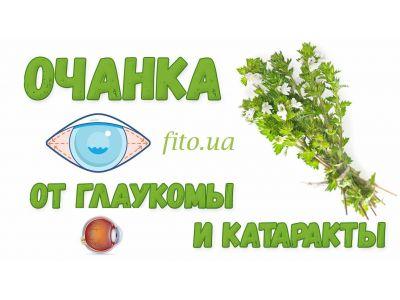Очанка для очей від глаукоми і катаракти