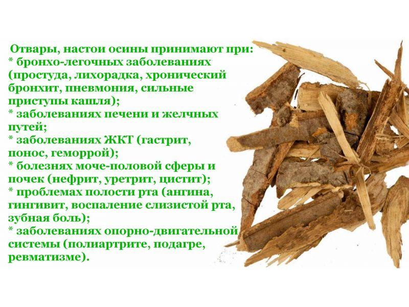 Рецепт от простатита овес кора осины молодой и водка как лечится прополисом при простатите