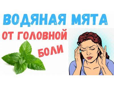 Водяна м'ята - трава від головного болю