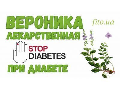 Вероніка лікарська при діабеті