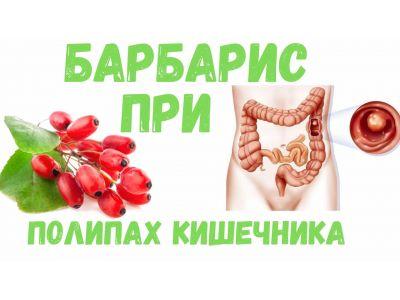 Барбарис корисні властивості при поліпах кишківника