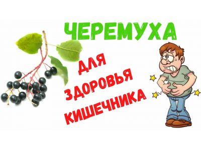 Черемшини ягоди для здоров'я кишкiвника!