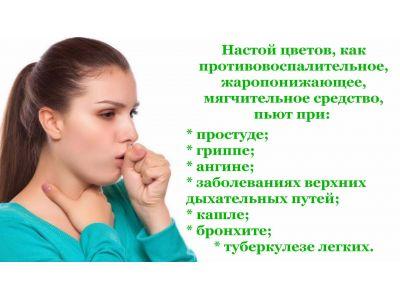 Липа від кашлю та інших хвороб