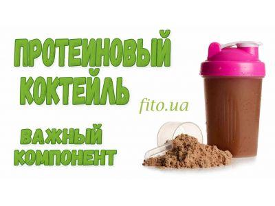 Протеїновий коктейль для схуднення