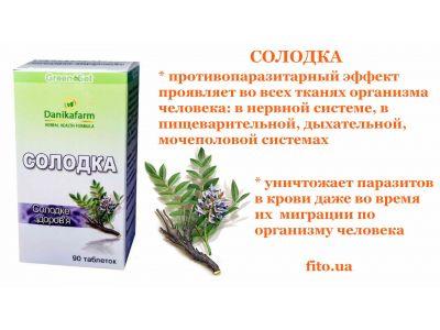 Трави від глистів та паразитів - Топ 10